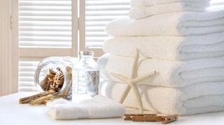 agents-blanchissants-les-differents-types-d-eau-de-javel-oxygene