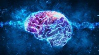faits-etonnants-sur-le-cerveau-humain
